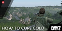 DayZ: How To Get Rid Of Cold and Cure Yourself