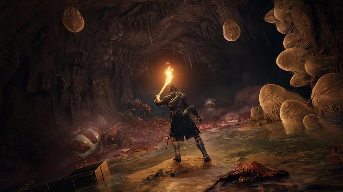 """<img src=""""ER9.jpg"""" alt=""""figure in armor and holding a lit-up torch illuminates a cave, revealing orange sacks along the walls"""">"""
