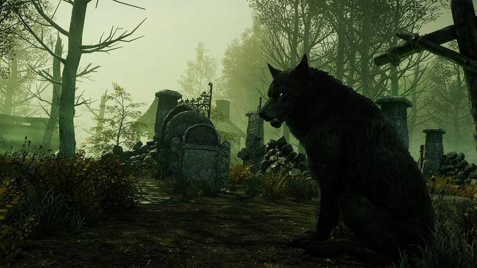 A wolf sitting in a gloomy graveyard.