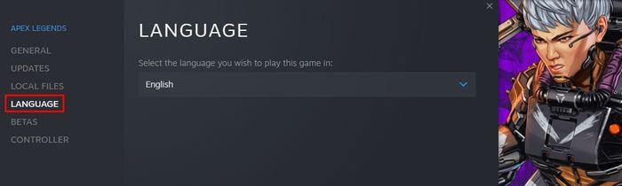Steam language settings screenshot.