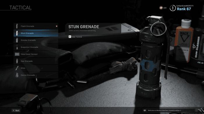 Flash Grenade Warzone