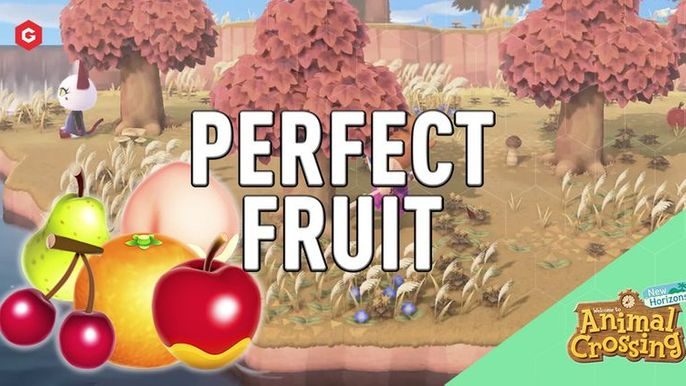 Perfect Fruit Animal Crossing Guide How To Get Perfect Fruit In New Horizons