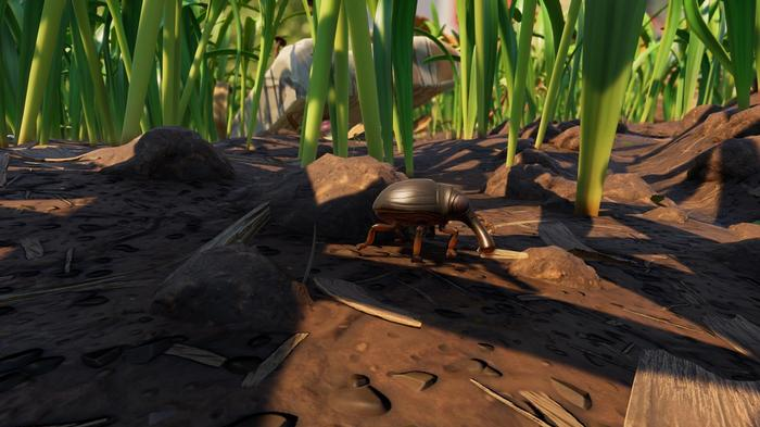 Grounded tame pet aphid weevil