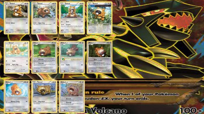Every Bidoof Pokemon TCG card.