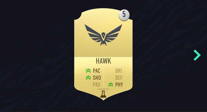 hawk fut 21