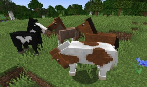 Minecraft how to tame a horse