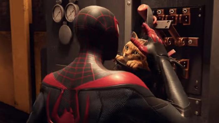 Spider man spider cat backpack