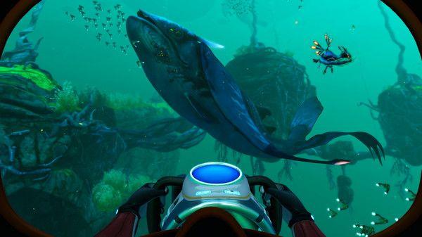 Subnautica Below Zero Countdown Whale