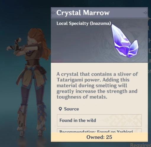 Image of a Crystal Marrow in Genshin Impact