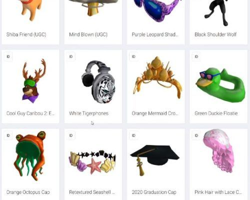 roblox leaked items