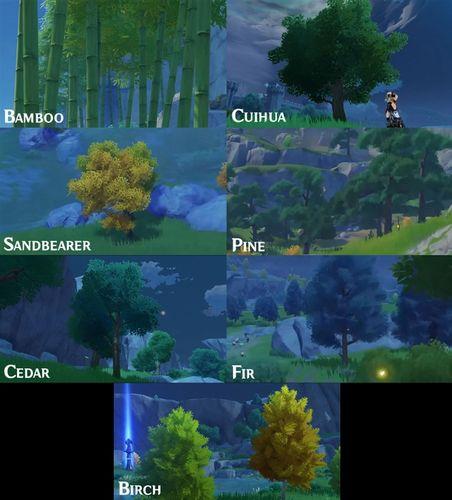 Genshin Impact Trees