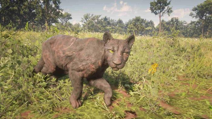 legendary panther red dead min