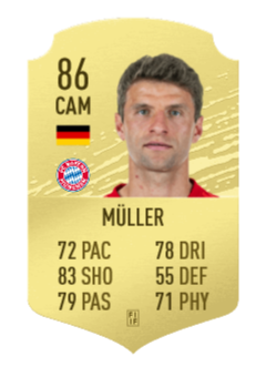 Muller Basic