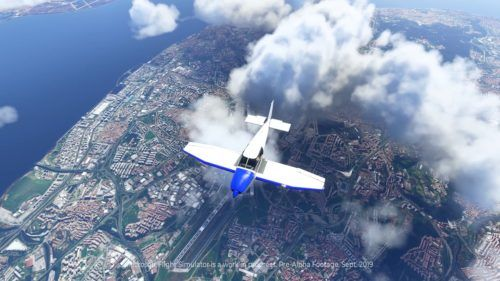 flight simulator coronavirus