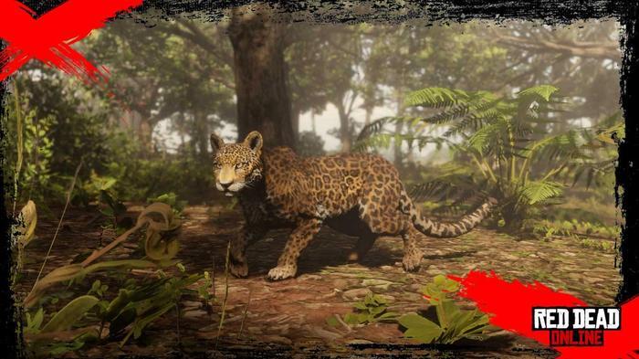 RED DEAD online update leopard