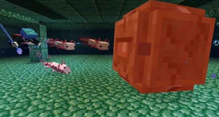minecraft axolotl attack 1